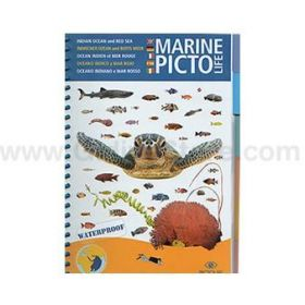 Pictolife Red Sea & Indian Ocean Sea-life Guide