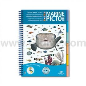 Pictolife Tropical Atlantic / Caribbean Sea-life Guide