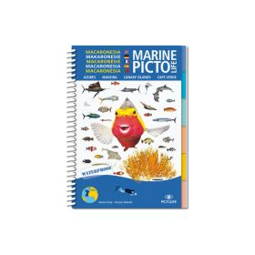 Pictolife Canary Islands, Madeira, Azores, Cape Verde Sealife Guide